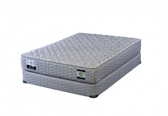 Restonic Dexter Cushion Firm Mattress